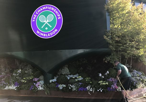 What to Watch on Day 1 of Wimbledon